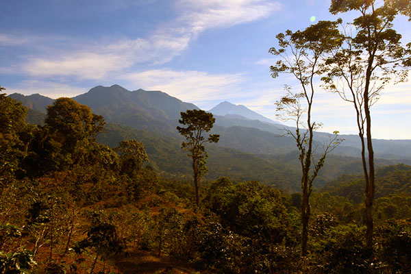elebrate in the southern region of Chiapas