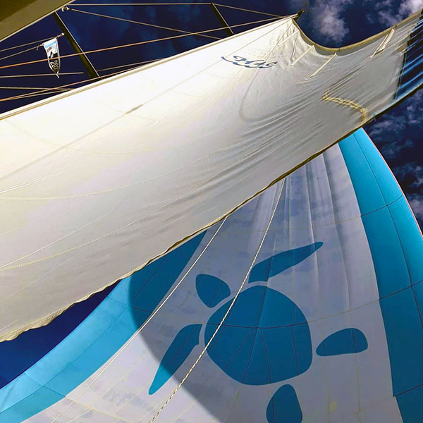 seaglub likes to sail PICTURES OF THE WEEK