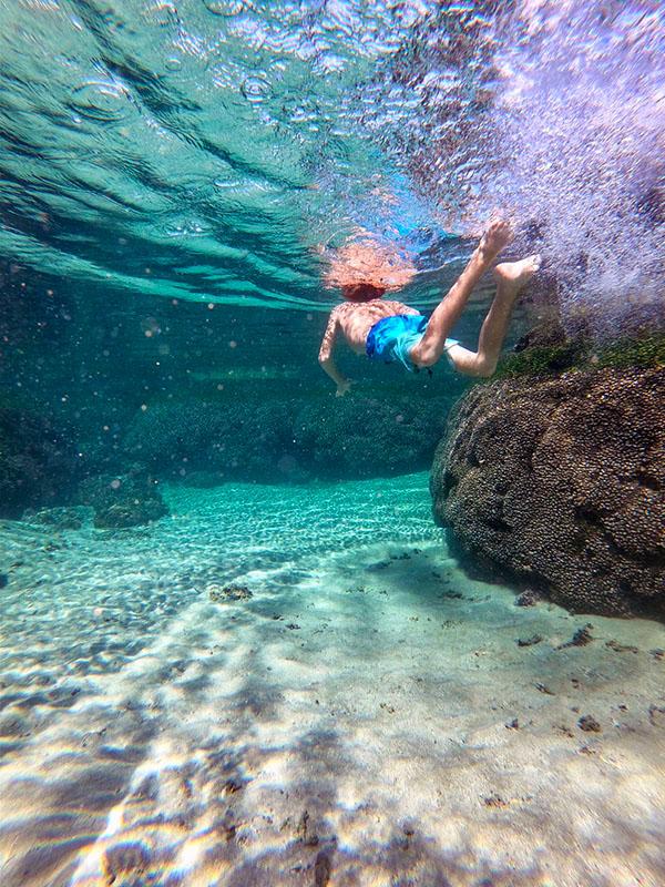 SUR snorkeling