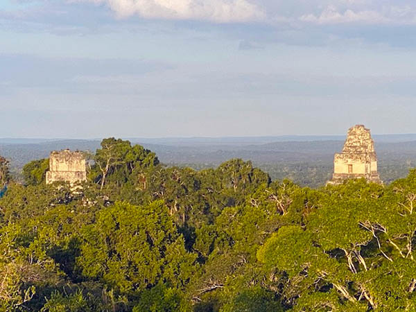 Tikal has been completely mapped and covered an area greater than 16 square kilometres which included abou