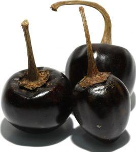 Cascabel Pepper