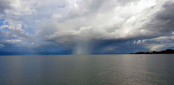 IMAGE OF A SQUALL