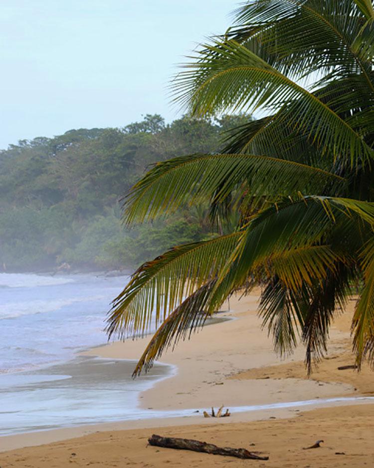 SY ORION IN BOCAS DEL TORO, PANAMA
